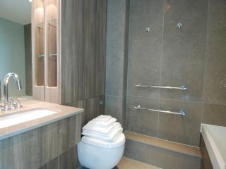 The Albert  2 Bedroom 2 Bathroom Penthouse - London vacation rentals
