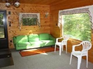 Conglomerate Falls Cabin on river, Keweenaw, MI - Allouez vacation rentals
