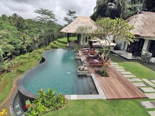 Villa Amrita Ubud Bali - Ubud vacation rentals