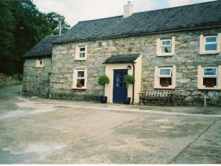 Nice 2 bedroom Cottage in Wexford - Wexford vacation rentals