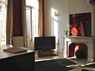 Beautiful flat in period house near EU offices - Brussels vacation rentals