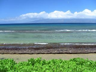 10ft from Ocean, 2 Bedrm Beachfront $150,000 Reno! - Lahaina vacation rentals