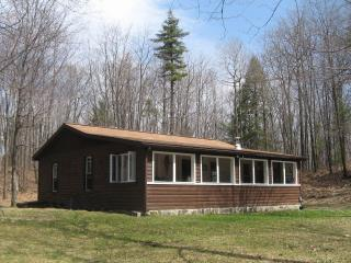 Hunter's View Vacation Rental - Bradford vacation rentals