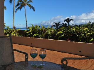 Beautiful View. Upgraded. True Kahana Beachfront. - Lahaina vacation rentals
