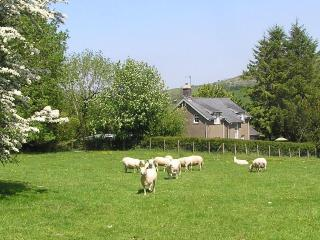 Farm cottage sea mountains Snowdonia Gwynedd - Abergynolwyn vacation rentals