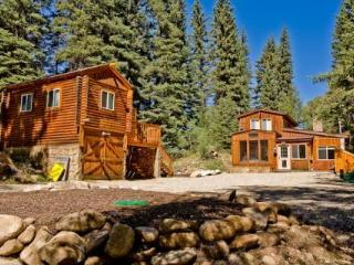 Private Cabin on Spring Creek! Fireplace! Slps 10 - Gunnison vacation rentals