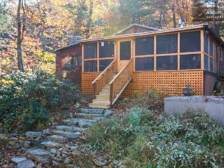 Dry River Cabin on Geo. Washington National Forest - Harrisonburg vacation rentals