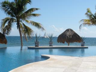 Spectacular Oceanfront Villa on the Mayan Riviera - Playa del Secreto vacation rentals