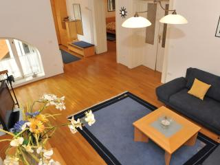 Spacious Apartment Anton TourAs in the city center - Ljubljana vacation rentals