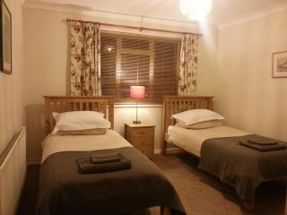 Farnham Flat: ideal for business visitors - Farnham vacation rentals