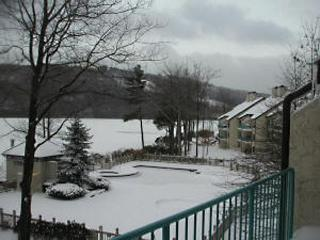4 bedroom, breath-taking view of the lake - Lake Harmony vacation rentals
