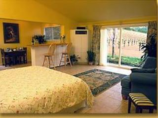 Living /bedroom - Zinscape - Healdsburg - rentals