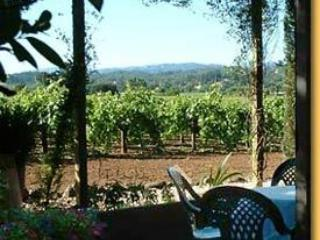 Beautiful House with Garden and Satellite Or Cable TV - Healdsburg vacation rentals