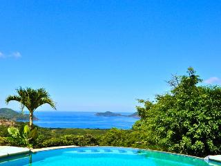 Luxury 4 bedroom Ocean View Villa - Playa Panama vacation rentals