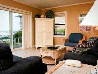 Ocean front perfection with 3 bedrooms and 2 baths - Tybee Island vacation rentals