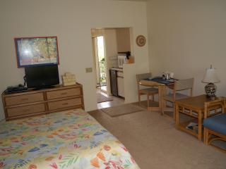 Cheerful, quiet studio -Arrive 4/18 - 5/1 $112.50 - Wailea vacation rentals