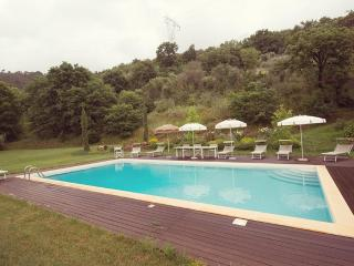 The Valley Farmhouse with swimmingpool near Pisa - Pisa vacation rentals