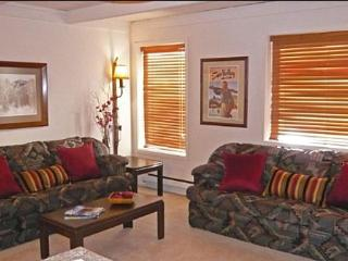 Charming Condo Recently Remodeled - Very Close to Sun Valley Village (1002) - Ketchum vacation rentals