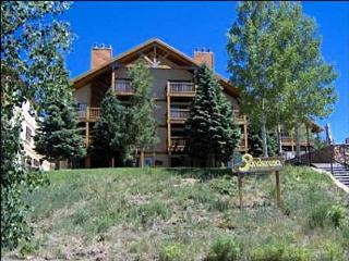 Wonderful Mountain Condo - Completely Renovated  (1019) - Crested Butte vacation rentals