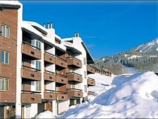 Great for Family Vacations - Easy Access to Area Attractions (1089) - Crested Butte vacation rentals