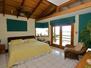 Casa TIgre -3B/3B Howler Monkeys wake you up - Playa Flamingo vacation rentals