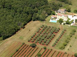 Authentic istrian Stanzia Cocci -privacy&luxury - Brtonigla vacation rentals