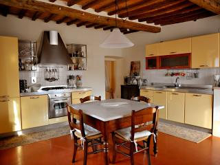 Spacious Tuscan Apartment in 15th Century Palazzo - Contignano vacation rentals