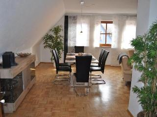 Vacation Apartment in Veitshöchheim - 1098 sqft, newly furnished, central, spacious (# 2514) - Randersacker vacation rentals