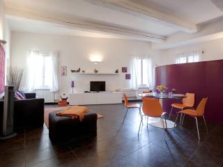 Open Studio Apartment in Florence by Duomo - Florence vacation rentals