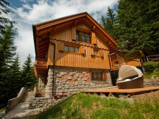 Wellness house Vila Triglav on Pokljuka - Zgornje Gorje vacation rentals