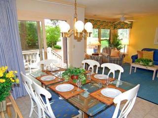 The Village at Palmetto Dunes - 2 Bedroom* - Hilton Head vacation rentals