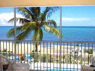 Amazing Ocean View Condo on the Beach! - Duck Key vacation rentals