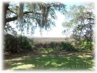 Beautiful Marsh Views Under Centuries Old Oaks - Saint Simons Island vacation rentals