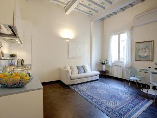 1 Bedroom Apartment at Blue-Sky Suite in Florence - Florence vacation rentals