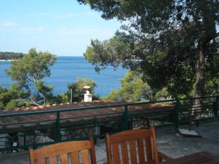 Beautiful house by the sea in Primosten - Drago - Primosten vacation rentals