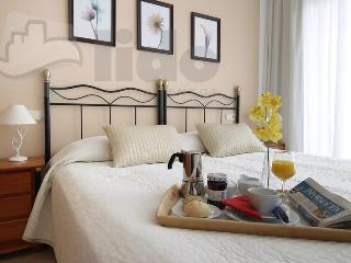 Unique seaside apartments at Benidorm beach - Benidorm vacation rentals