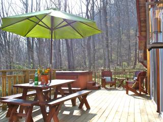 Hip Little Cabin on the Hill - Fantastic Location - Woodfin vacation rentals