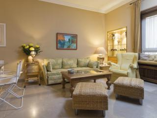 [411]Elegant apartment in the historic city centre - Cordoba vacation rentals