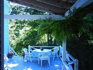 Bright 3 bedroom Northeast Harbor House with Internet Access - Northeast Harbor vacation rentals