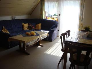 Vacation Apartment in Gunzenhausen - 753 sqft, playset, sauna (# 2547) - Burgoberbach vacation rentals