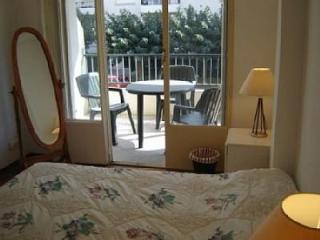 Large bright apartment - beside park - Perpignan vacation rentals