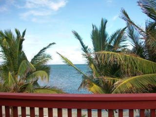The Tree House, charming 2 bedroom  beach house - San Pedro vacation rentals