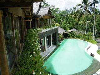 large VILLA 400m² + STAFF- 10 sleeps,lovely pool - Ubud vacation rentals