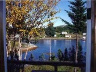 Back Cove Cottage-direct waterfront boater's dream - Springdale vacation rentals