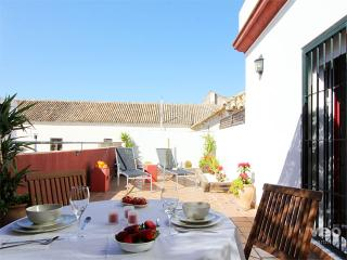Alameda Terrace. 1 bedroom, large private terrace - Seville vacation rentals