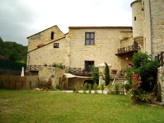 Holiday Rentals in Chateau Dordogne-Lot FRANCE - Gramont vacation rentals