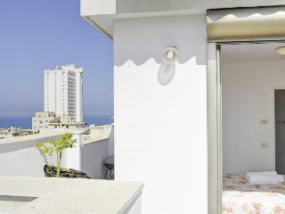 Best Location  Luxurious 3 Bd PENTHOUSE/ Duplex WITH PARKING - Tel Aviv vacation rentals