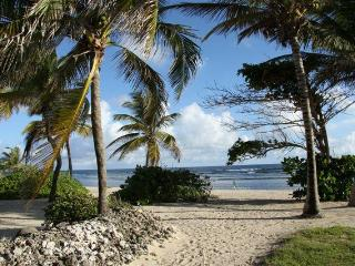 Luxury 2 Bedroom Beachfront Condo Minutes to Town - Christiansted vacation rentals