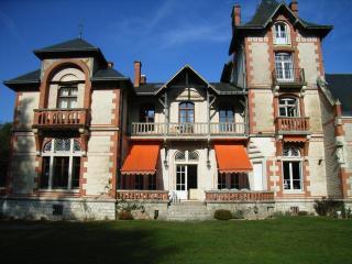 Chateau De Bois Rabot - Brinon-sur-Sauldre vacation rentals