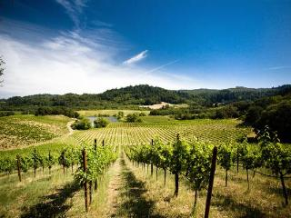 Minutes from Napa's brightest attractions - Napa vacation rentals
